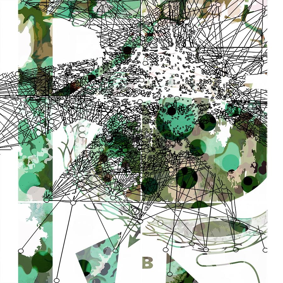 BIOMORPHIC SOCIAL MAP 1